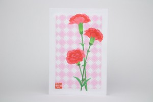 Post Card Pack Carnation