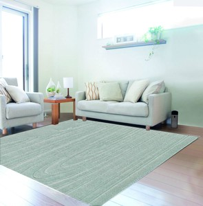 Soft Antibacterial Carpet
