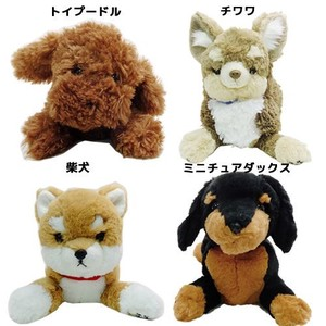 Dog Soft Toy Chihuahua Miniature Dachshund Toy Poodle Shiba Dog