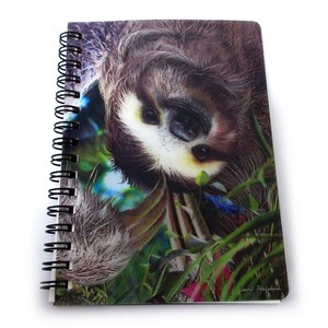 Stationery Ring Notebook Sloth