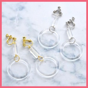 Clear Pipe Beads Earring