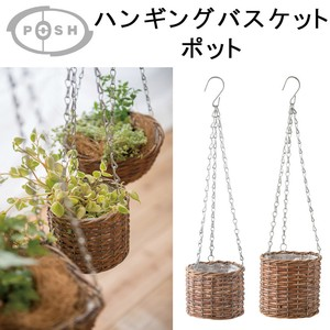 Hanging Basket Pot