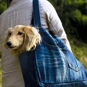 Dog Trolley Bag