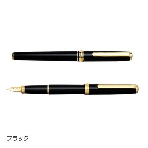Fountain Pen Standard