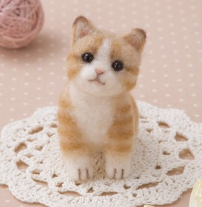 Kitten Craft