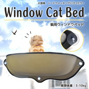 favourite cat Comfortable for Cat Window Bed