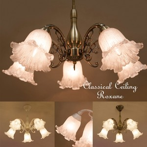 Ring Lamp Lightning Type