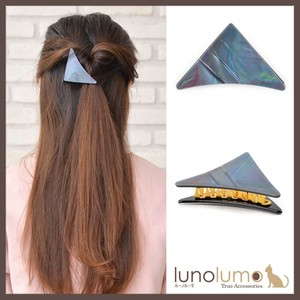 Aurora Color Triangle Clip