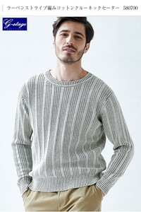 Limit Selling Stripe Cotton Crew Neck Sweater
