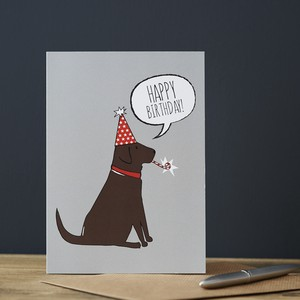 Greeting Card Birthday 6 Pcs Set