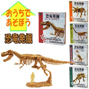 Dinosaur 5 Types For Home Use
