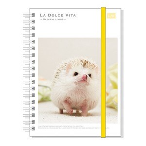 Photo Series Attached Hard Cover Ring Notebook Elegant Hedgehog