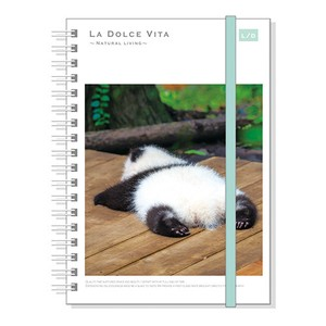 Photo Series Attached Hard Cover Ring Notebook Panda Bear