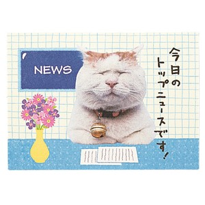 Birthday Cat Pop Card