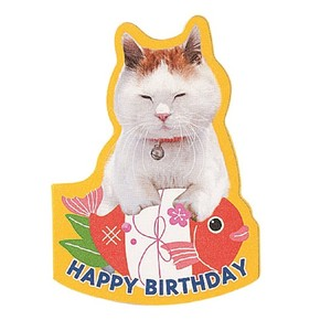 Birthday Cat MIN CARD