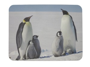 Mouse Pad Penguin
