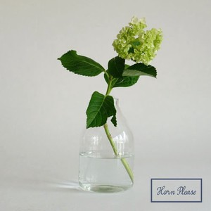 Glass Flower Vase Rope