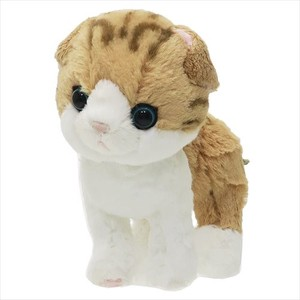 Soft Toys Scottish Fold