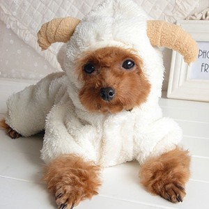 Pet Fluffy Sheep With Hood Cover All