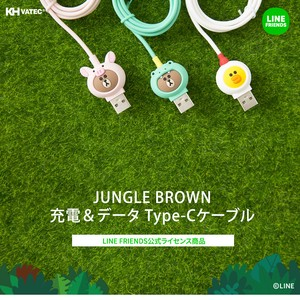 Line Friends Brown Type Cable