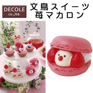 Java Sparrow Sweets Macaroon