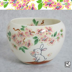 Rabbit Mino Ware