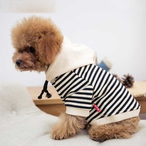 Pet A/W Border Hoody