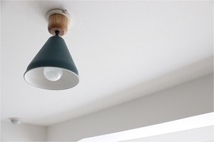 【3color】(電球なし)COLOR & WOOD 1BULB CEILING LIGHT_カラーアンドウッド1灯シーリングライト