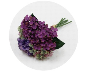 Bouquet Object and Ornament Hydrangea Purple Air Beautiful