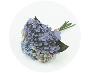 Bouquet Hydrangea Blue Air Beautiful