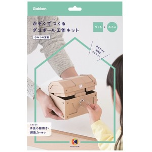 Cardboard Box Craft Kit