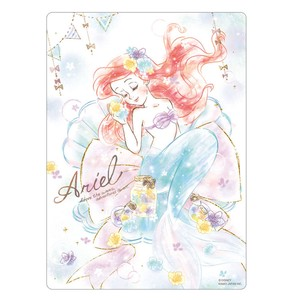 Stationery plastic sheet Ariel Princes Stationery