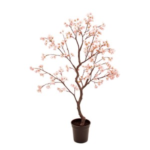 ★MAGIQ★清明桜鉢PINK