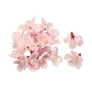 ★MAGIQ★薄紅の桜 落ち輪PINK48コ入り