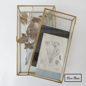 Frame Glass Case