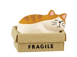 Cat Accessory Case Cardboard Box