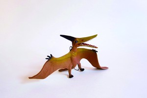 Pteranodon with String