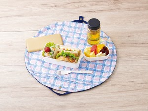 Bag Lunch Mat Lunch Bag