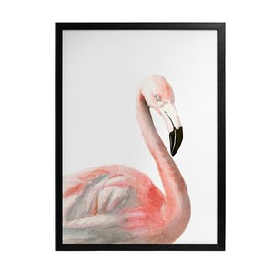 【Creative Co-Op Home】ウォールフレームアート フラミンゴ,PS Framed w/ Glass Flamingo Wall Art