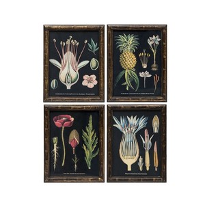 【Creative Co-Op Home】ウォールフレームアート Plant,Fir Framed Wall Art Black 4 Styles