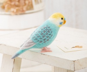 Parakeet Pastel Color