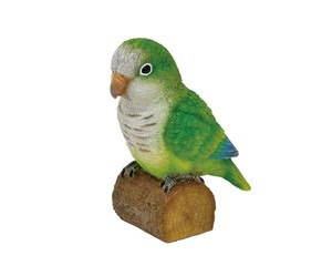 Solid Objects Parakeet