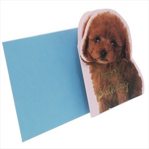 Greeting Card Birthday Card Toy Poodle
