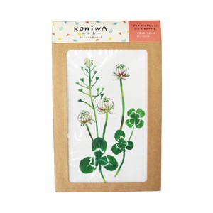 Window Writing Papers & Envelope White