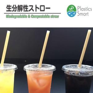 生分解性ストロー biodegradable straw