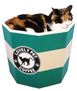 Products for Dogs & Cat Cat Cup Cafe