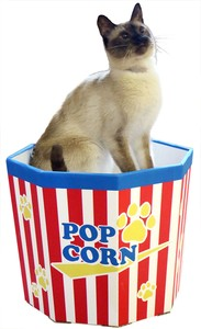 Products for Dogs & Cat Cat Cup Pop Corn