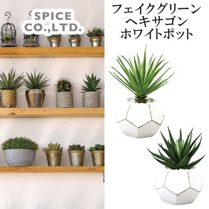 Artificial Plants Hexagon White Pot