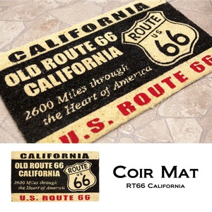 Doormat Mat for American