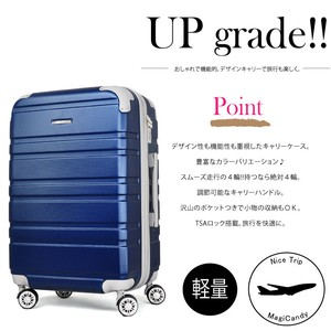 Carry Case Suit Case Bi-Color Light-Weight Trip In-Flight Included